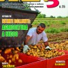 Area3 N25 1a Cover