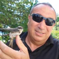 Carmine Coppola Viso