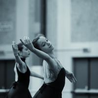 Danza Nov3